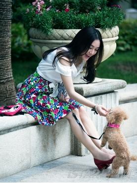 宠物狗狗LED时尚发光项圈