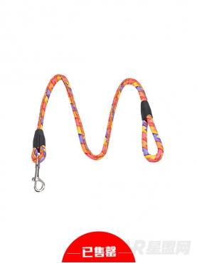 波普风格彩色牵引绳